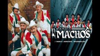 Banda Machos - Mi Banda el Mexicano
