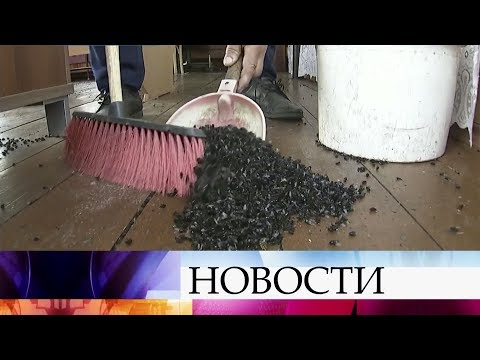 Следователи Свердловской области