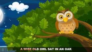 A Wise Old Owl with lyrics - Nursery Rhymes by EFlashApps