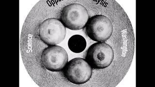 Oppenheimer Analysis - Washington