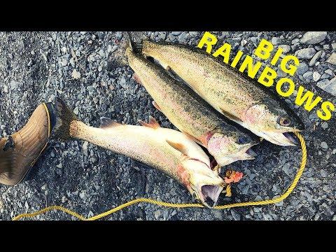BIG TROUT: Fishing Kodiak Island For Rainbow Trout