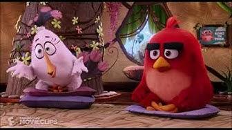 Angry Birds - Vihanhallintakurssi (Fanidubbi)