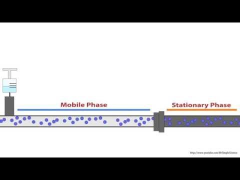 HPLC - The Stationary Phase - Animated