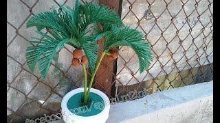Coconut tree using crepe paper - Hướng dẫn làm cây dừa bằng giấy