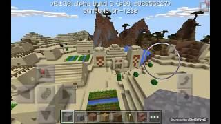 Minecraft Seedler :Köy Ve Çöl Tapınağı Seedi.