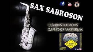 SAX SABROSON 2014 - EDIT SU ALTEZA DEL WEPA DJ PUCHO MASTERMIX
