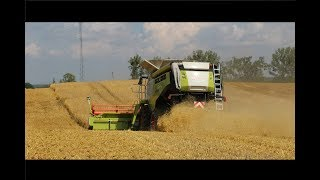 |Harvest in Poland|Żniwa|Jęczmień 2017|