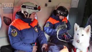 Спуск без парашюта   Новости сегодня   Происшествия   Масс Медиа