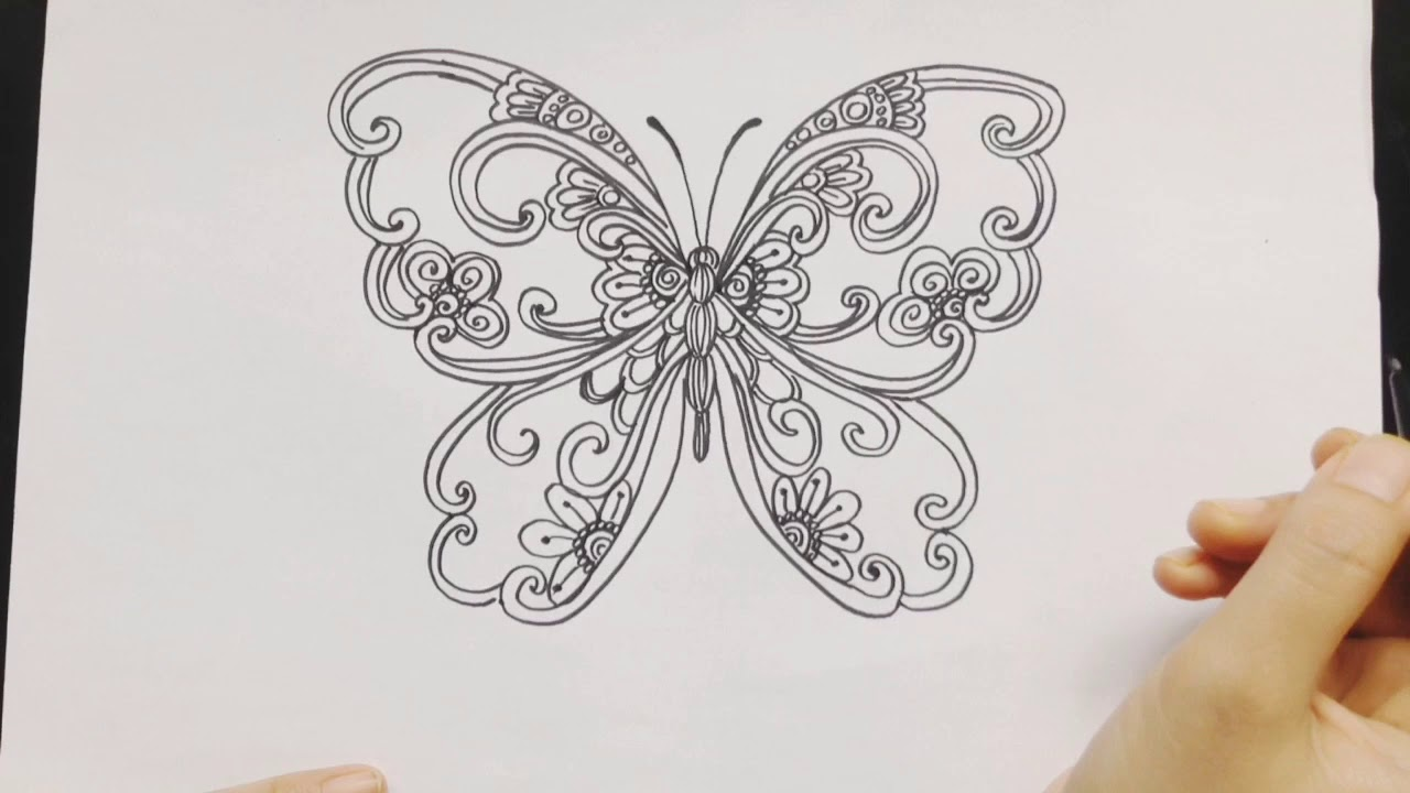 Zentangle Butterfly Ragam Hias Kupu Kupu Youtube