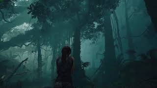 Shadow of the Tomb Raider - Visuals and Environments - PC 1440p / Max Settings (EN)