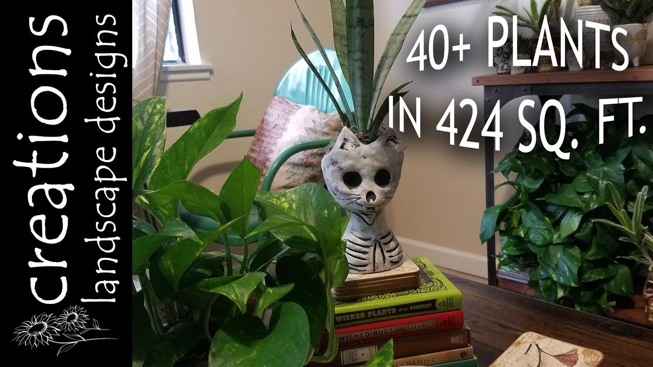 Indoor Plant Tour Fall 2018