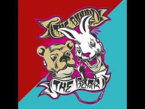 The Bunny The Bear - Congregation lyrics
