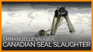Emmanuelle Vaugier: Canadian Seal Slaughter