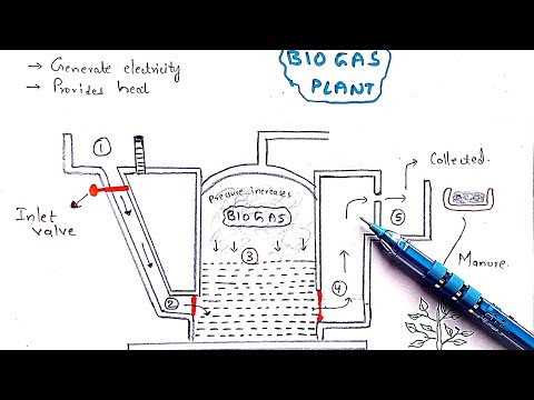 Methane production   Biogas plant   Working   Mechanism   Methanogens   Biogas production