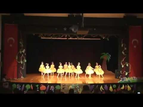Kultur2000 Koleji Anaokulları yıl sonu gösterisi Bale-2011