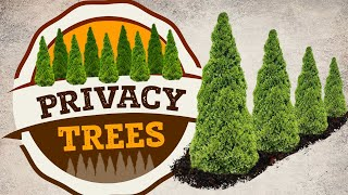 Privacy Trees   Fast Growing Privacy Trees   PlantingTree™