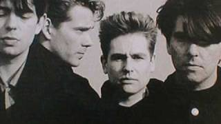 Video Bombers Bay Echo & The Bunnymen