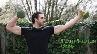 Protein from plants + vegan bodybuilding and diet