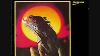 Ruts DC -  Animal Now - 4. Despondency - 1981