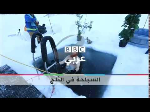 بي_بي_سي_ترندينغ | #بالفيديو : علماء استراليون يسبحون في بركة ثلجية  - نشر قبل 31 دقيقة