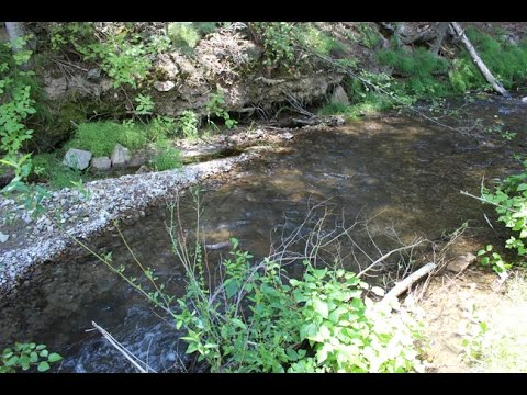 Dyani Gold 20 acre Placer Mining Claim on Indian Creek in Utah