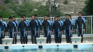 第64回海上保安大学 海神祭 潜水研修による潜水実演