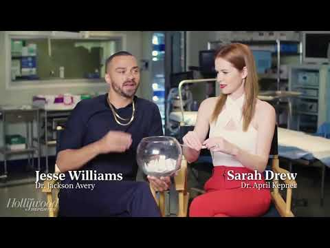 Fishing for Questions Jesse Williams & Sarah Drew