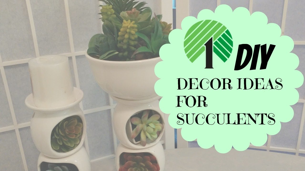 Dollar Tree Diy 2 Decor Ideas For Succulents Youtube