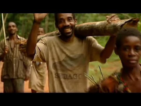 Hunter-Gatherers - Tribe With Bruce Parry - BBC