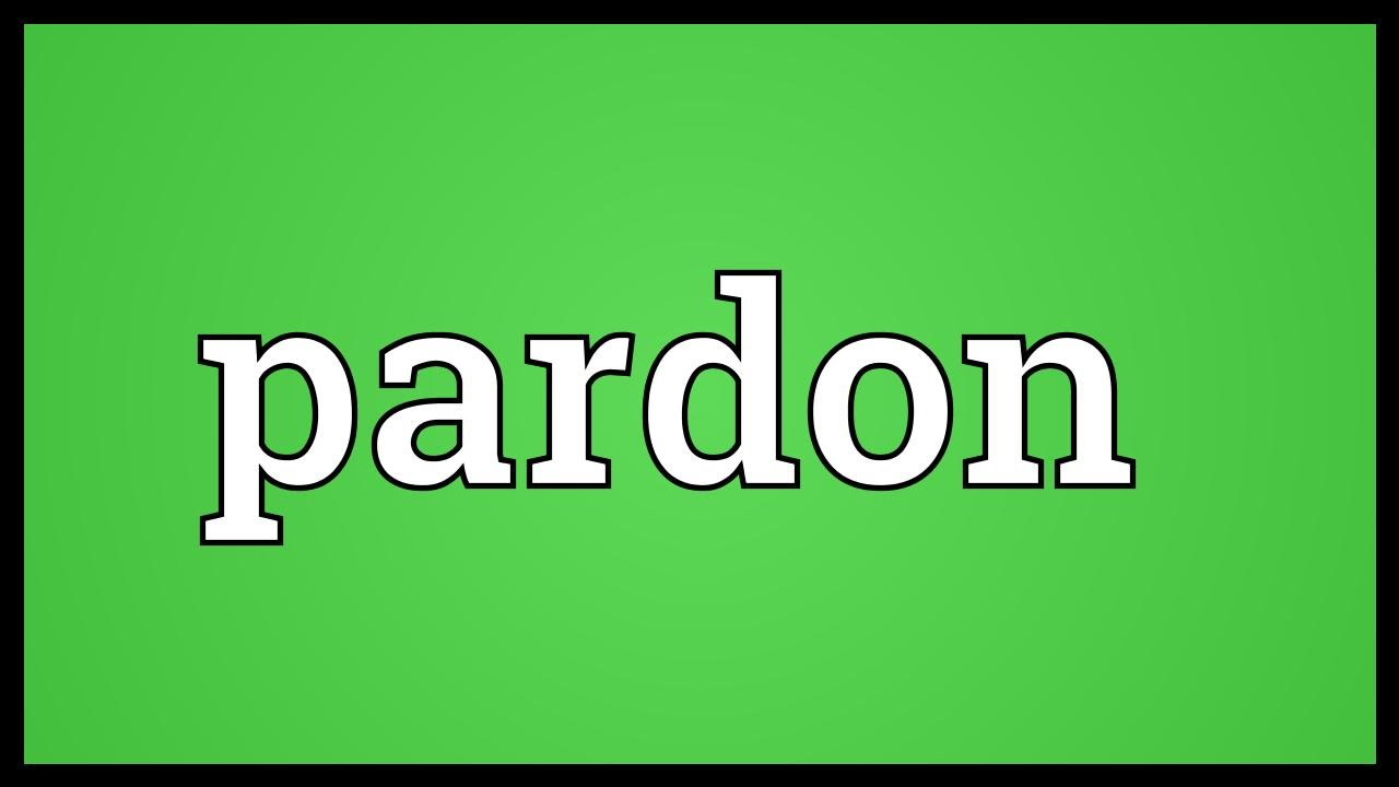 Pardon  >> Pardon Meaning