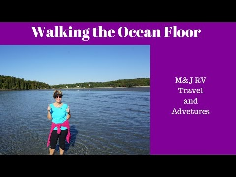 Low Tide Walk About   Sagadahoc Bay  M&J RV Travels And Adventures