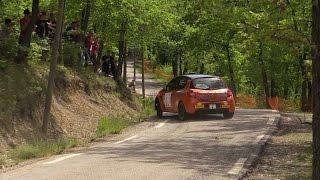 Rallye Ronde de La Durance 2015 Clio R3 limit Maxime Belhomme
