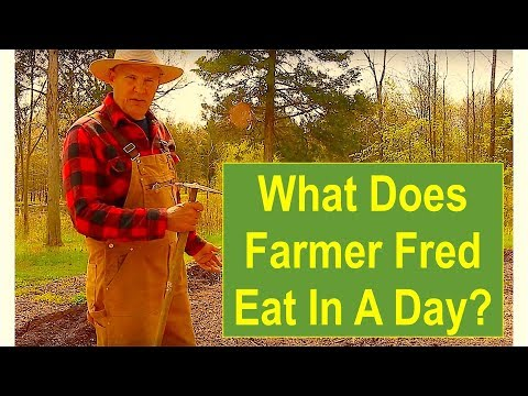 What Does Farmer Fred Eat In A Day?