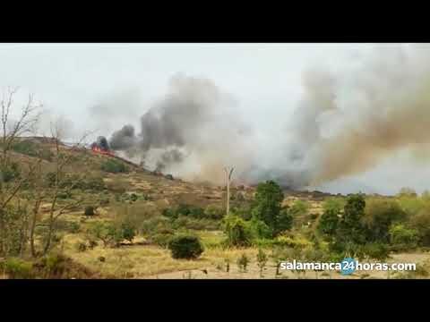 Incendio en Pereña de la Ribera