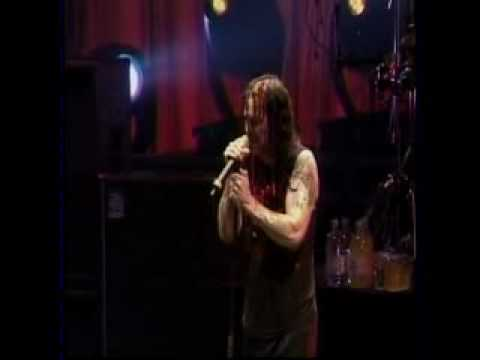 Flying High Again Live in Camden 2003 PRO SHOT PERFECT QUALITY