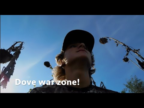 Dove Hunting War Zone! Public Land, Must Watch!