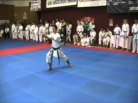 Karate Progresul Cernica Eger Ungaria 2011-4/5