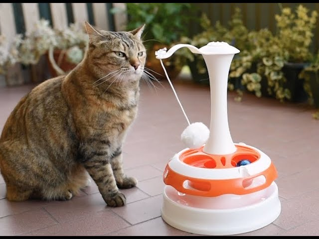 Ferplast Cat Toys: a new concept in playing with your pet