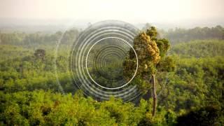 himbrecht-anything-else-sam-goku-amp-quatri-39god-of-nature39-remix-nie-wieder-schlafen