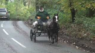 First time in a carriage; breaking a pony to drive: what we do and why we do it.