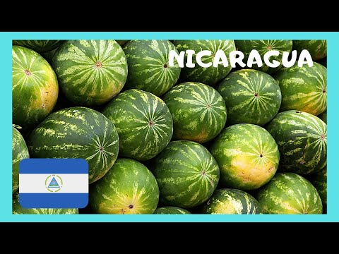 NICARAGUA, what to see at the CENTRAL MARKET (mercado) of GRANADA