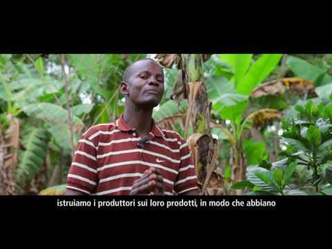 [TRAILER] Il caffè in Uganda: la nostra cultura, il nostro patrimonio, la nostra economia