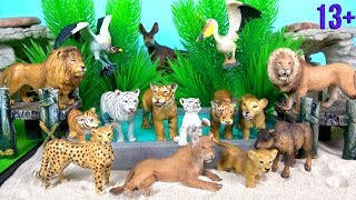 Big Cat Week NEW Lions Tigers Cheetah and Wild ZOO Animal Toys