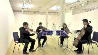 Erskine String Quartet - Sigur Rós - Hoppipolla