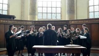 Cambridge Choir in de Oude Kerk Amsterdam (4): Mother of God here I stand (John Tavener)