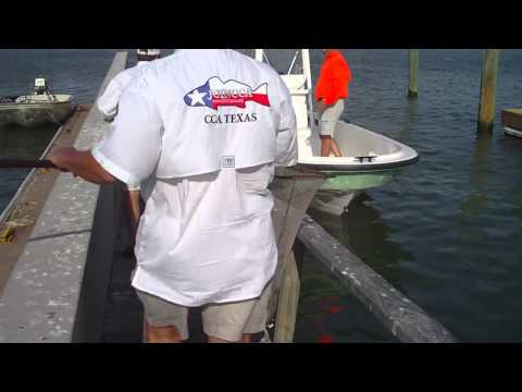 Tagged Redfish Release
