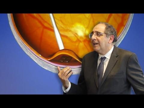 RI Seminar: José Alain Sahel, MD : ...Artificial Vision, Artificial Retina, Optogenetics