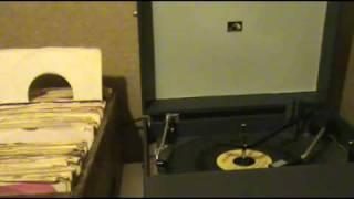 "Harold Shutters - ""Bunny Honey"""
