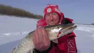 Рыбалка на реке Иртыш в феврале 2021 года