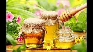 Пчелиный мед  как добывают, где и сколько стоит
